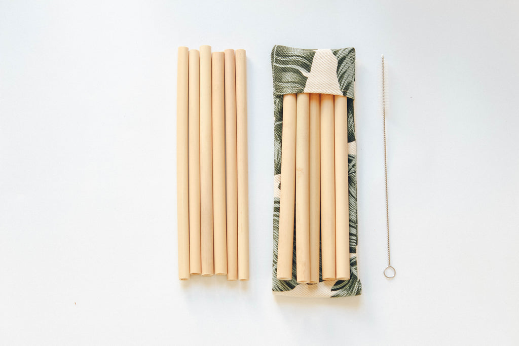 Bamboo Straw travel Pack