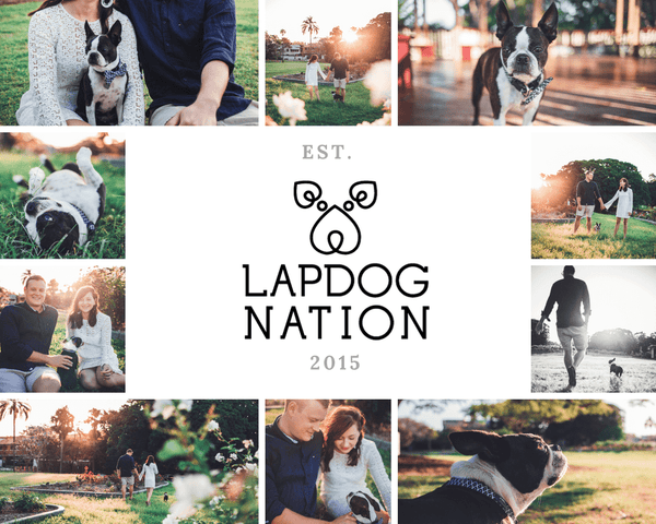 LapdogNationOwners