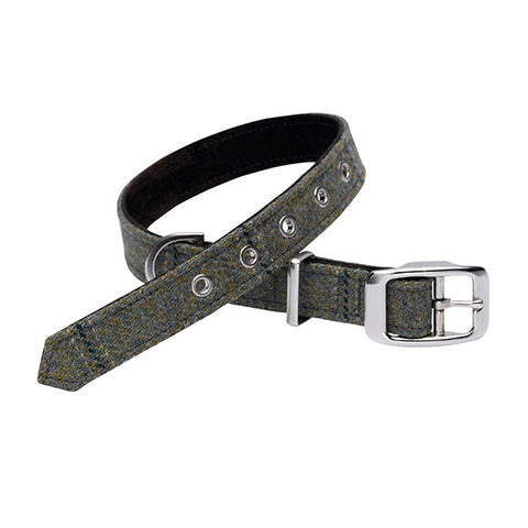 Collar - Digby Scottish Tweed