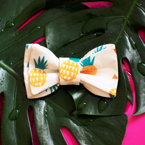 Bowtie - Pineapple Frenzy (Waterproof)