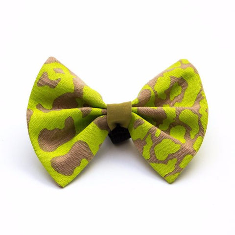 Dog bow tie in vibrant leopard print!