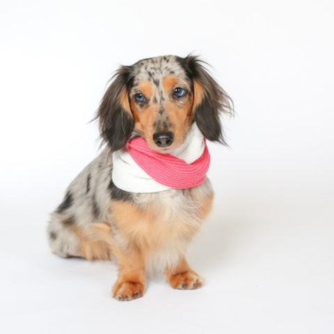 Snood - Ruby Rufus in Strawberry & Ivory