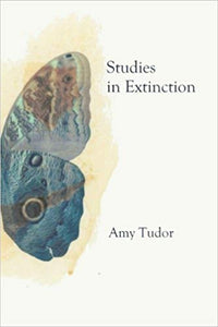 Studies in Extinction