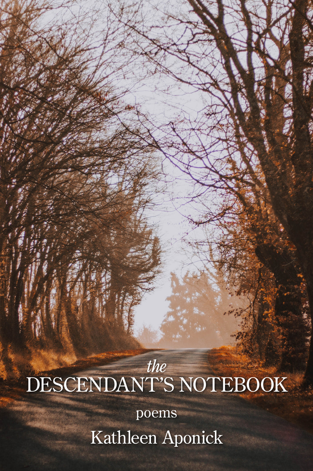 The Descendant's Notebook
