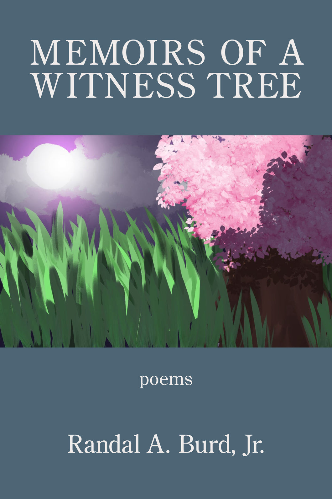 Memoirs of a Witness Tree