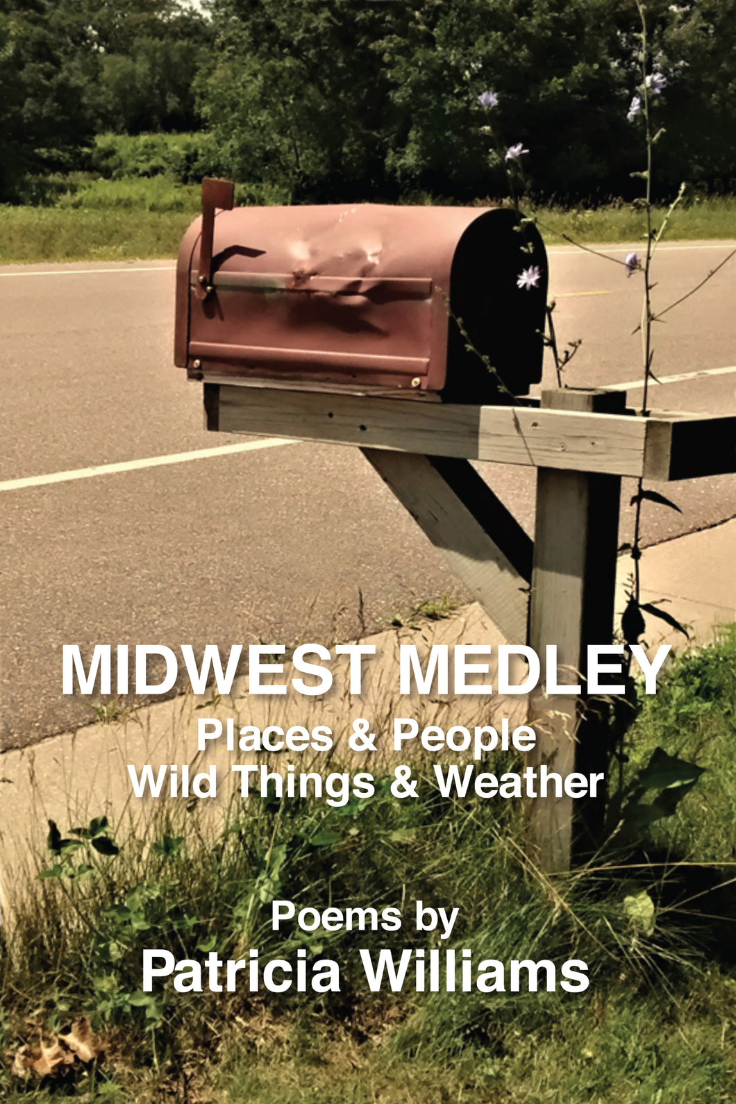 Midwest Medley: Places & People, Wild Things & Weather