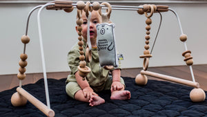Abacus Play Gym - FRAME & 5 TOYS