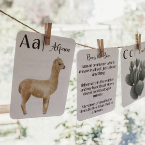 Nature's ABC Flash Cards