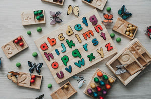 Coloured Timber Lower Case Letter Puzzle