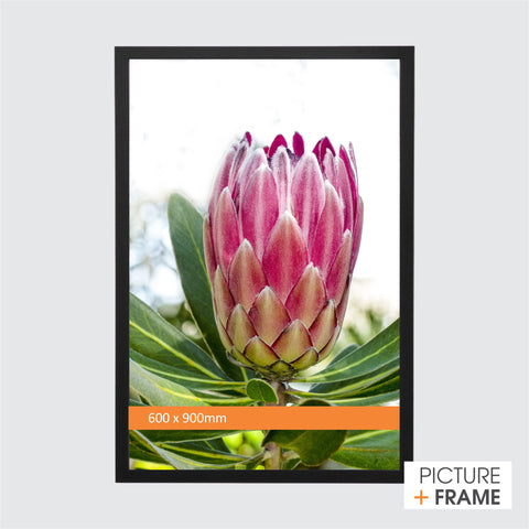 600 x 90mm Ready Made Wall Frame - Picture Framer Perth