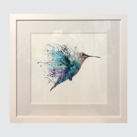 Hummingbird on White - Picture Framer Perth