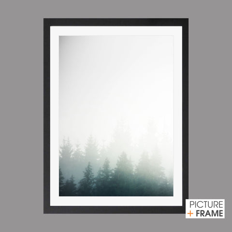 In the Mist - Picture Framer Perth