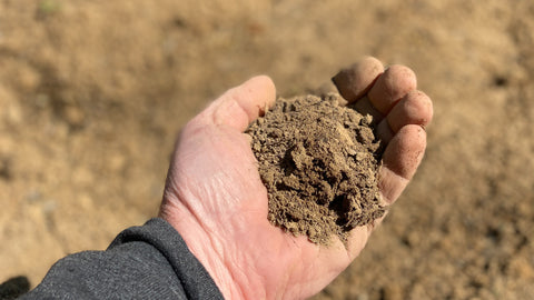 Soil samples are an inexpensive way to achieve big results for your next buck.