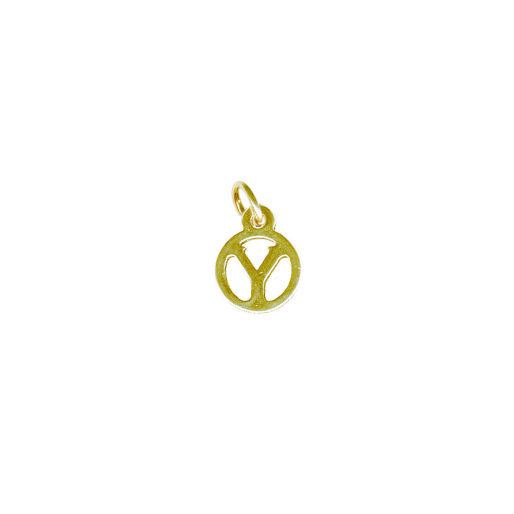 Y Tiny Initial Charm