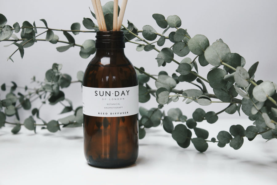 Sunday of London Botanical Reed Diffuser (150ml) - The Hackney Emporium