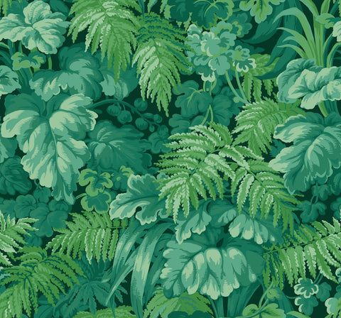 Royal Fernery Martyn Lawrence Bullard Wallpaper 113/3009