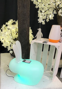 Bunny Indoor / Outdoor Table Lamp