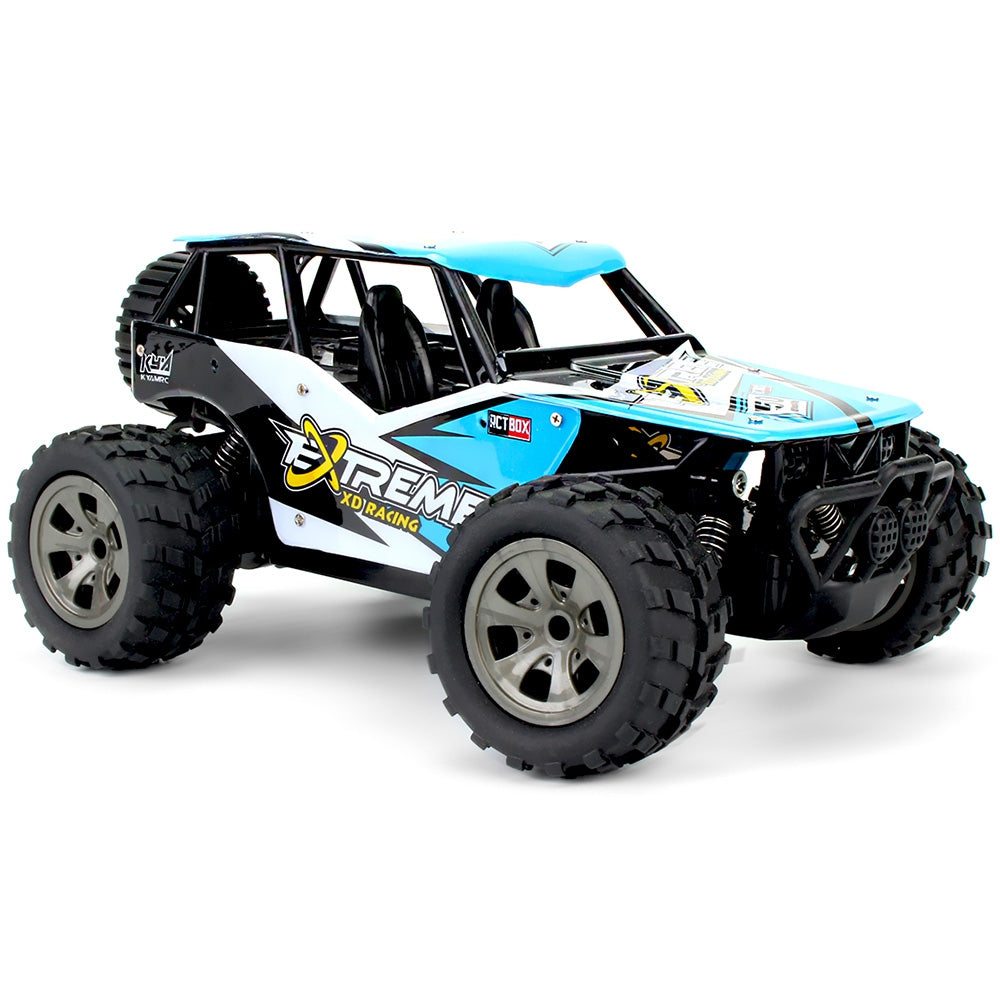 RC Rally Car