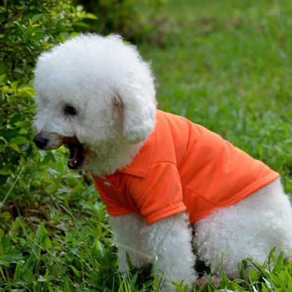 Dog Polo Shirt