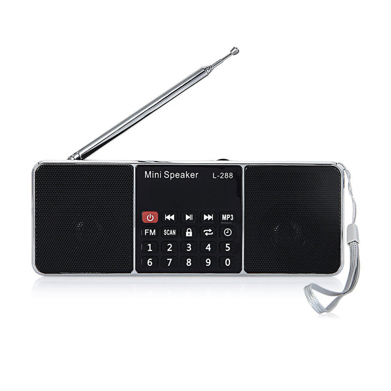Mini Radio and Bluetooth Speaker