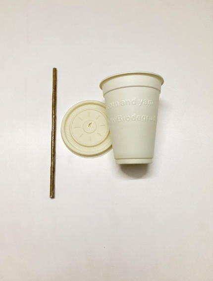 Juice Cup With Lid & Coconut Leaf Straw- Cornstarch