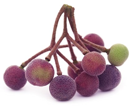 Phalsa (Indian Sherbet Berries)