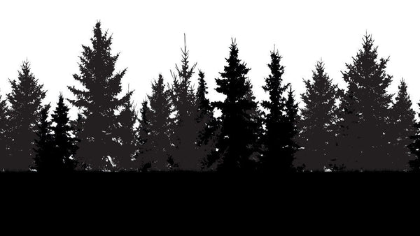 Forest Silhouette -  unique single-piece wallpaper from Pattern and Picture