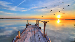 Sunset Jetty -  unique single-piece wallpaper from Pattern and Picture