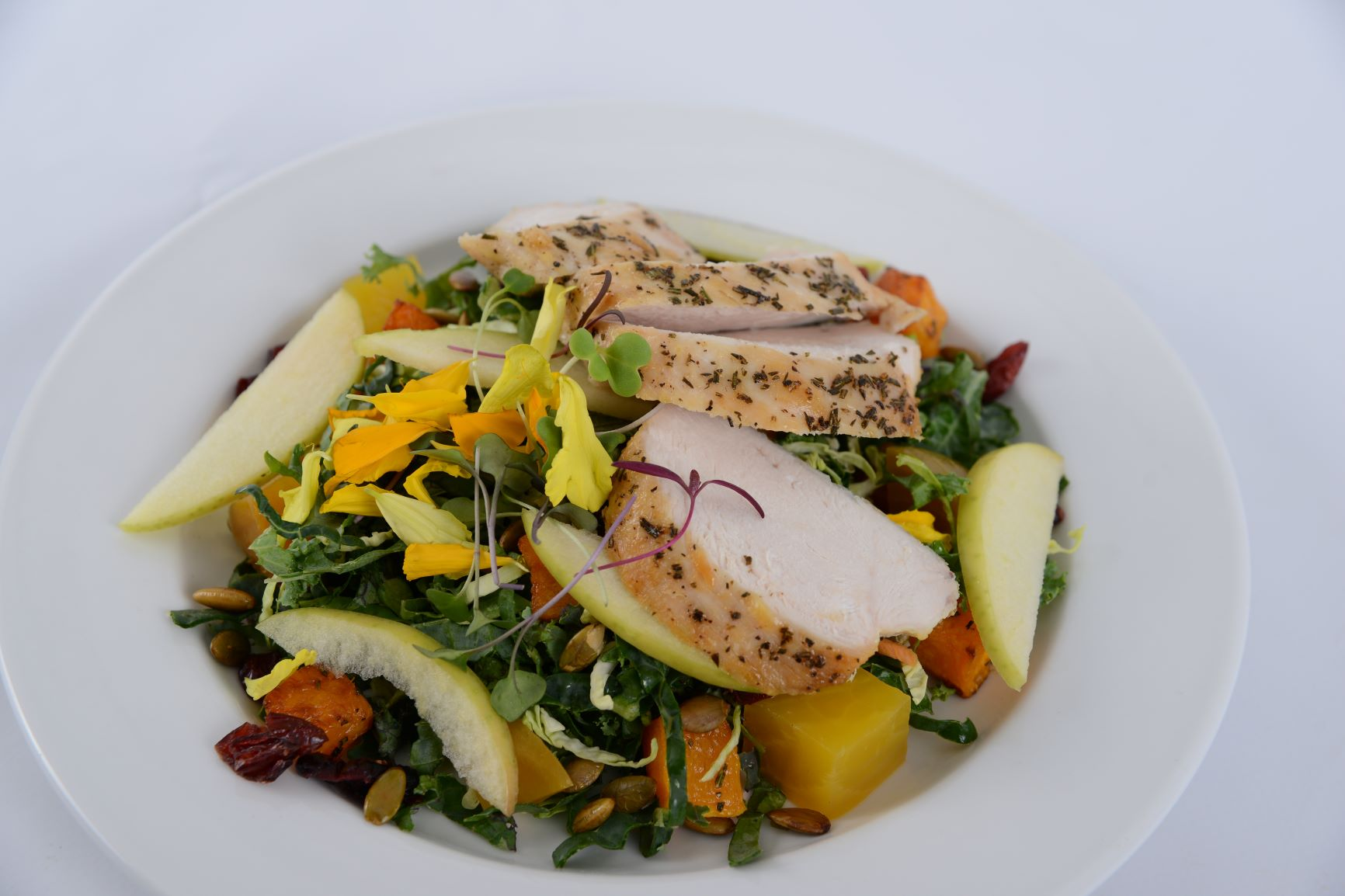 Autumn Harvest Salad w/ Chicken or Salmo
