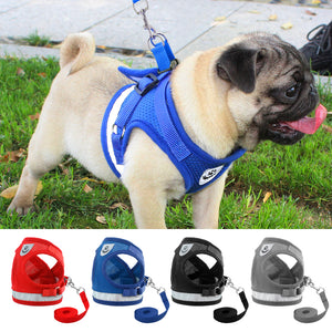 Reflective Walking Harness with Leash
