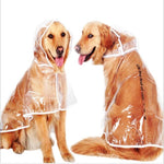 Transparent Raincoat