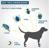Image of Dewel™ - Pro Guard Flea and Tick Collar