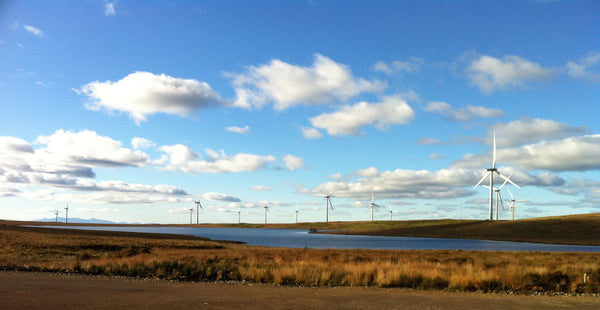 Renewable electricity generation hits record high in Scotland
