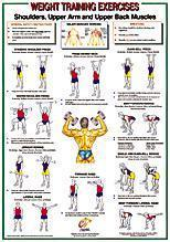 Shoulders-Upper Arm/Back Muscles Chart