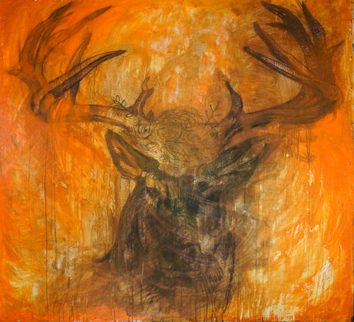 374 - Stag, 2019