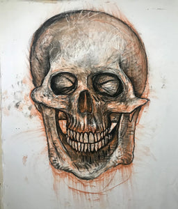 Anatomical Skull Drawing, 2019