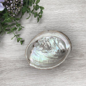 Abalone Paua Shell Smudging Bowl - Gina's Charms
