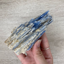 Load image into Gallery viewer, Kyanite Blade Cluster #2030 A-Grade - Gina's Charms