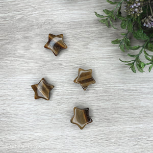 Star - Tiger Eye - Gina's Charms