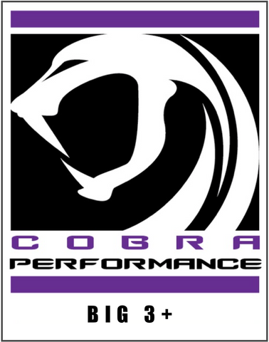 Big 3+ - cobra-performance-nyc