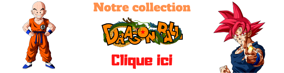 notre collection dragon ball