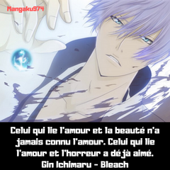 citation-gin-ichimaru-bleach