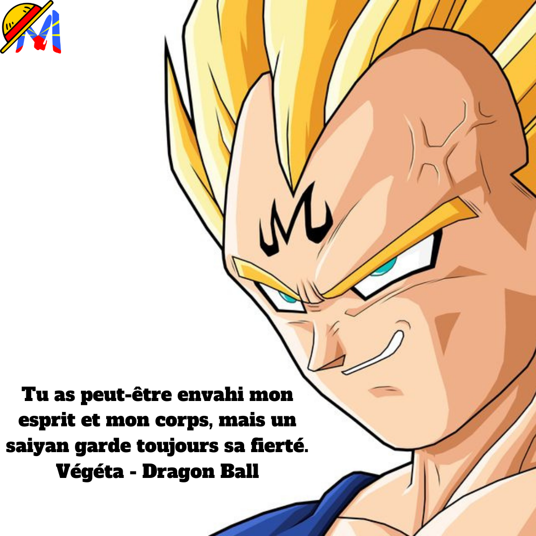 Majin-Vegeta-citation