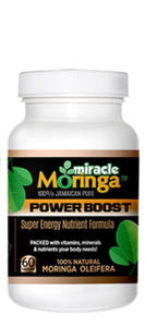 Miracle Moringa / Moringa Olfeifera - Great Dog Shop