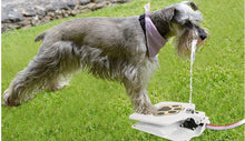 Load image into Gallery viewer, Dog water fountain - Great Dog Shop