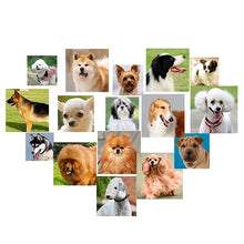 Load image into Gallery viewer, Best dog ball launcher - Great Dog Shop
