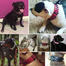 Load image into Gallery viewer, Adjustable Spiked Studded Leather Dog Collars - Great Dog Shop