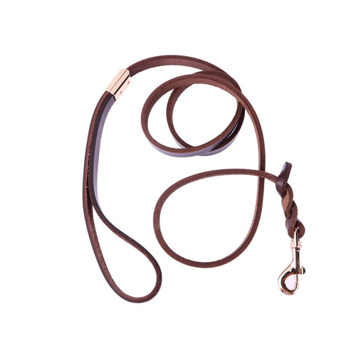 Cattle-Hide Rope for Dogs Walk and Control Dog Leather Rope dogs (Coffee) - Great Dog Shop