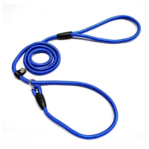 A Great leash for your awesome dog! - Great Dog Shop