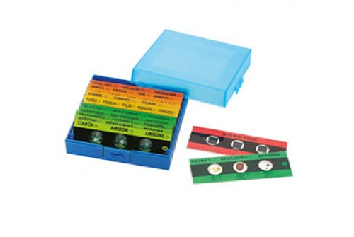 Handheld Microscope and Slides